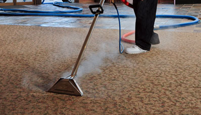 pro best carpet cleaning