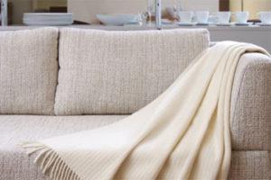 pro-best-carpet-cleaning-surrey-vancouver12